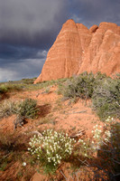 NP ARCHES, CANYON LANDS & MOUNTMENT VALLEY